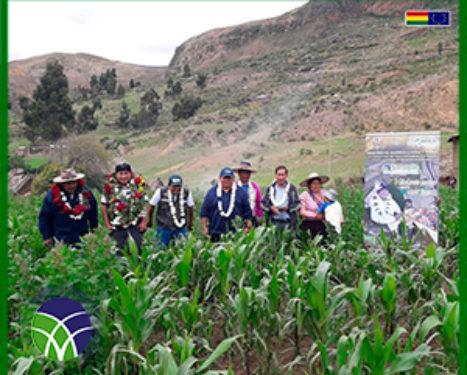 <span id='sec'>En el municipio de Tapacari:</span><br><span id='prim'>GOBIERNO INVIERTE MÁS DE UN MILLÓN DE BOLIVIANOS EN SISTEMA DE RIEGO EN LA COMUNIDAD INCUYO</span>